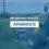 Apelul Primăriei Măgurele: După 15 mai, curățați terenurile de ambrozie!